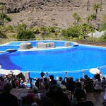 Photo of Palmitos Park