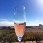 Photo of Artesa Vineyards & Winery