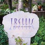 Trellis Spa