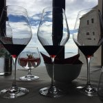 Photo of Korta Katarina Winery