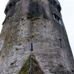 Newtown Castle Foto