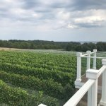 Brys Estate Vineyard and Winery | Traverse City, Michigan
