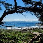 Foto de French Beach Provincial Park