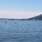 Photo of Bregenz Festival