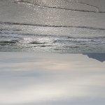 20171006_154659_large.jpg