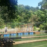 The Ninja Water Obstacle Course at Phillip's Sanctuary!
