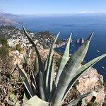 Top of Ana Capri