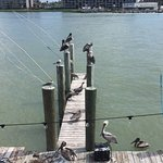 Foto de Hooters - Johns Pass