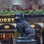 El perrito Bobby