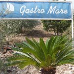 Photo of Gastro Mare