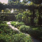 Photo of Brooklyn Botanic Garden