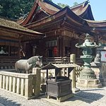 Фотография Kotohira-gu Shrine