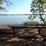 riverfront bench