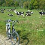 The back roads of Bretagne by eBike!