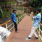 Bridge at the foot of the Falls