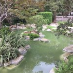 ...the Japanese Pond brings joy and tranquility....