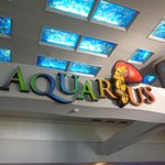 Aquarius Casino Resort, BW Premier Collection Photo