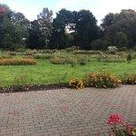 Понравилось, очень красиво, много растений и прекрасный пруд