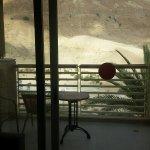 Photo of Kibbutz Ein Gedi