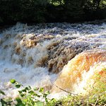 Aysgarth Middle Falls within walking ditance from Carperby about three quarters of a mile.