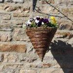 Floral display at West Burton