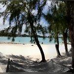 Photo de Ile des Deux Cocos