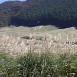 Фотография Sengokuhara
