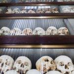 Skulls of the dead