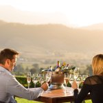 Iconic wines with mesmerizing views - Haute Cabriere, the Franschhoek gem on the mountain