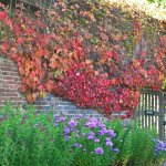 Benthall Hall Photo
