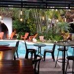 Φωτογραφία: Colours Oasis Resort