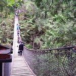 Lynn Canyon Park Foto