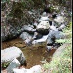 Photo of Caledonia Falls