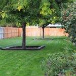 large fenced dog park