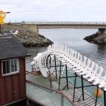 Prime Berth Fishing Museumの写真