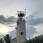 Foto van Punta Sur
