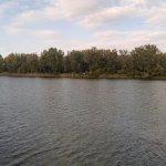 Foto de Alte Donau