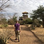 Foto de Robanda Safari Camp