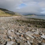 Foto de Lyme Regis Philpot Museum