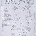 Florida Caverns State Park Foto
