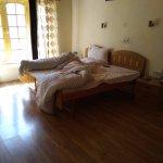 Basic room, ample sunlight