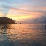 Son of Man Sea Tours Foto