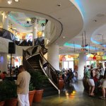 Love Bongos Orlando in Disney Springs! Fun for the entire family!