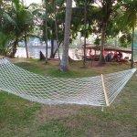 Foto di Palmgrove Lake Resort