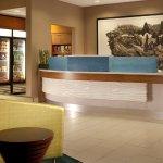 Photo de SpringHill Suites Gainesville