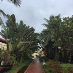 In the resort, the way to the private beach