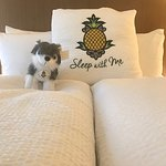 Hotel Rose - A Staypineapple Hotel