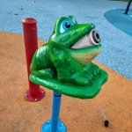 This frog is one of the spray park features in Les Gove Park.
