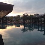 RIU Palace Tikida Agadir Pool and Grounds with resting rodent control operatives.