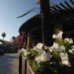 Photo of Insotel Cala Mandia Resort & Spa
